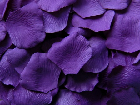 Product reviews for purple silk rose petals value pack of 1000 mightylinksfo