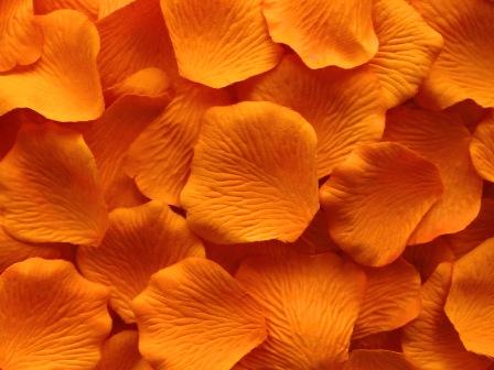 orange silk rose petals value pack of svorange