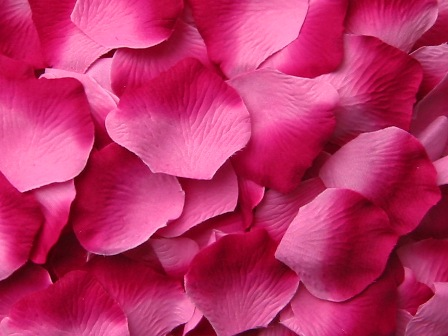 Berry silk rose petals, bag of 100