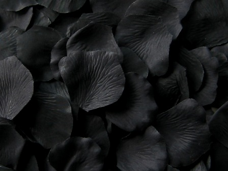 Black silk rose petals, bag of 100