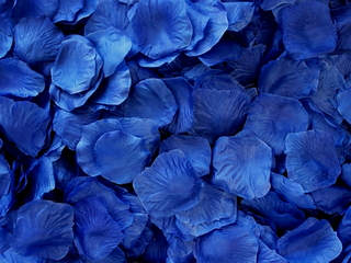Blue Aisle Rose Petals, 500ct