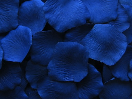 Blue silk rose petals, bag of 100
