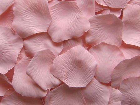 Blush silk rose petals, bag of 100