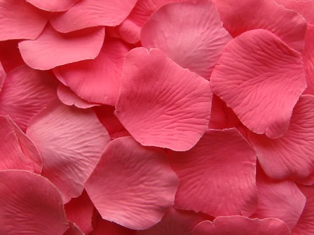 Bubble Gum silk rose petals, bag of 100