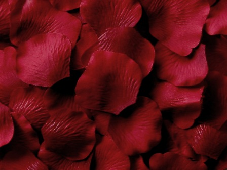 Burgundy silk rose petals, bag of 100