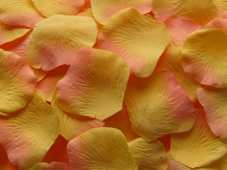 Citrus silk rose petals, bag of 100