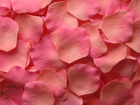 Coral silk rose petals, bag of 100