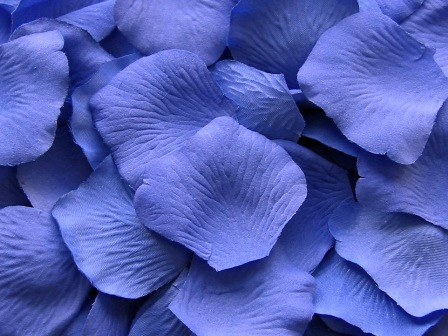 Cornflower silk rose petals, bag of 100