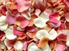 Freeze dried rose petals - Deposit