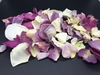 Ivory and Purple Rose Petals for Pathways