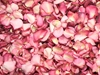 Pink Rose Petals for Pathways