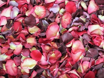 Red and Pink Rose Petals for Pathways