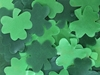 Shamrocks, 200ct